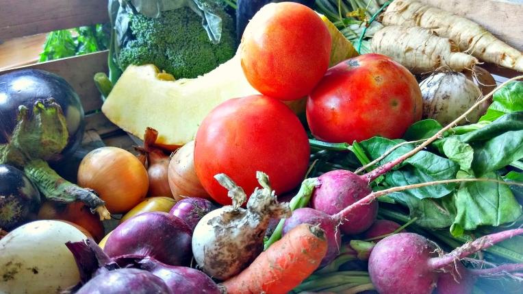 prosto-ze-wsi-warzywa-3